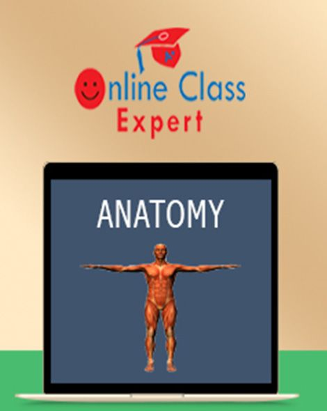 Take My Online Anatomy Class For Me- Online Class Expert